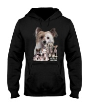 Chinese Crested Awesome Family 0701 Hooded Sweatshirt thumbnail