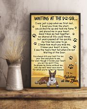 Miniature Bull Terrier Waiting at The Door 11x17 Poster lifestyle-poster-3
