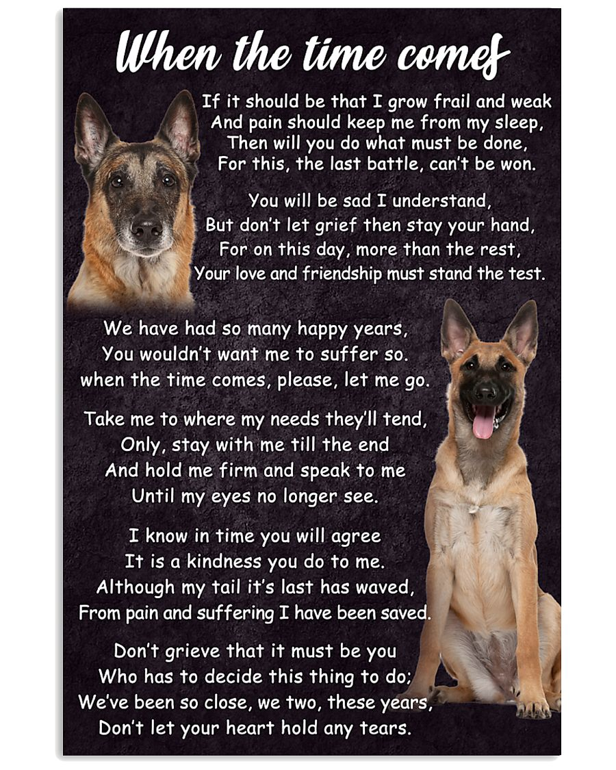 Belgian Malinois The Time Comes Poster 2301 11x17 Poster