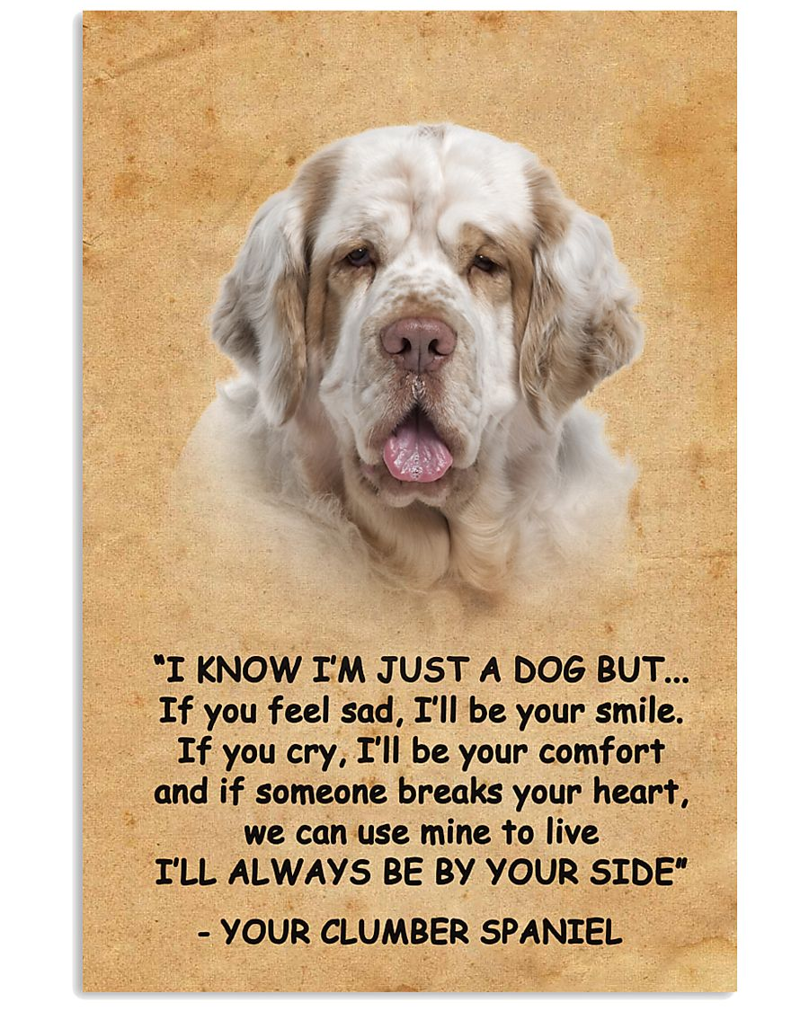 Clumber Spaniel I Know Im Just A Dog Poster 1401  11x17 Poster