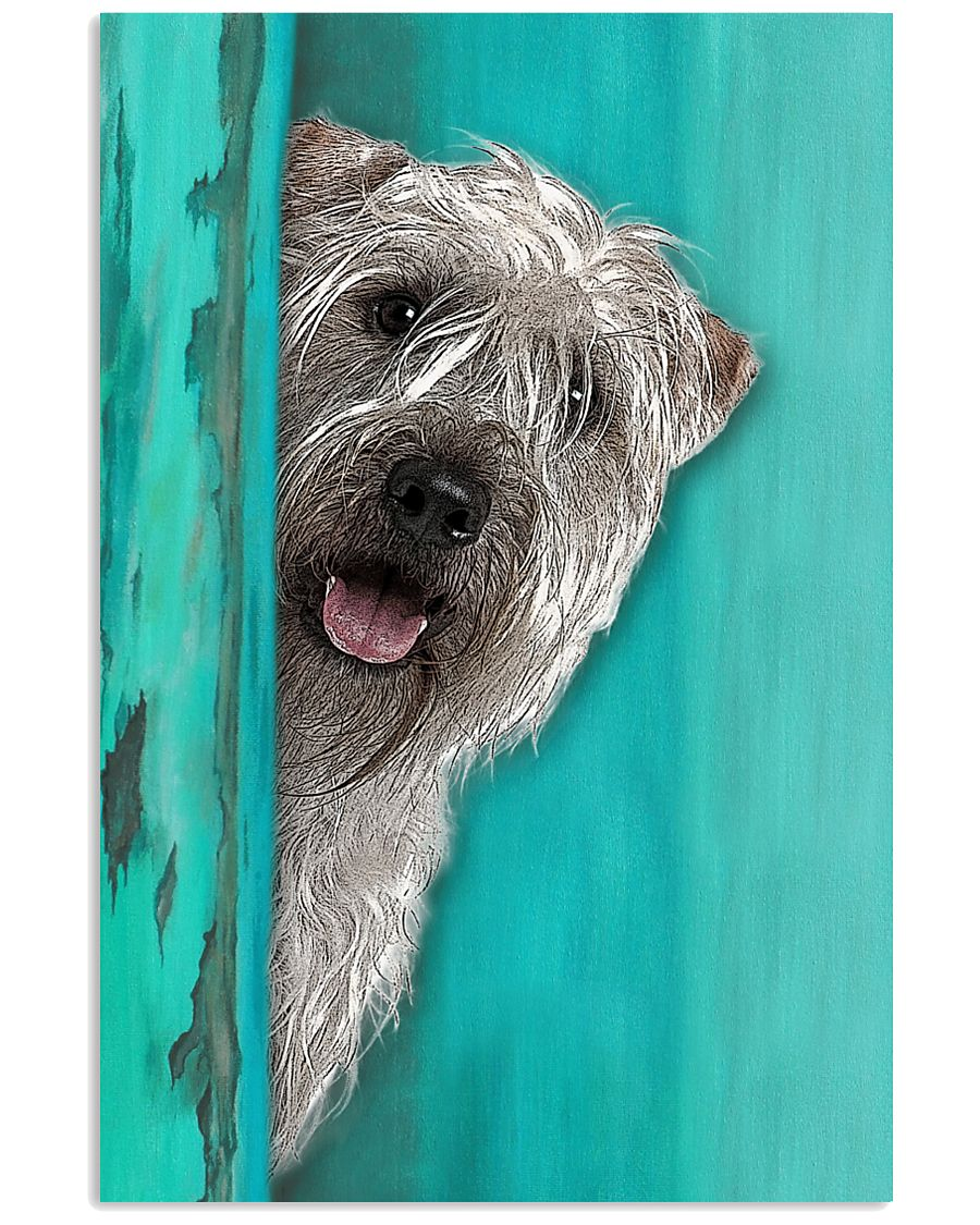 Soft Coated Wheaten Terrier Gorgeous 11x17 Poster
