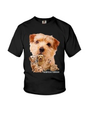 Norfolk Terrier Awesome Family 0701 Youth T-Shirt tile