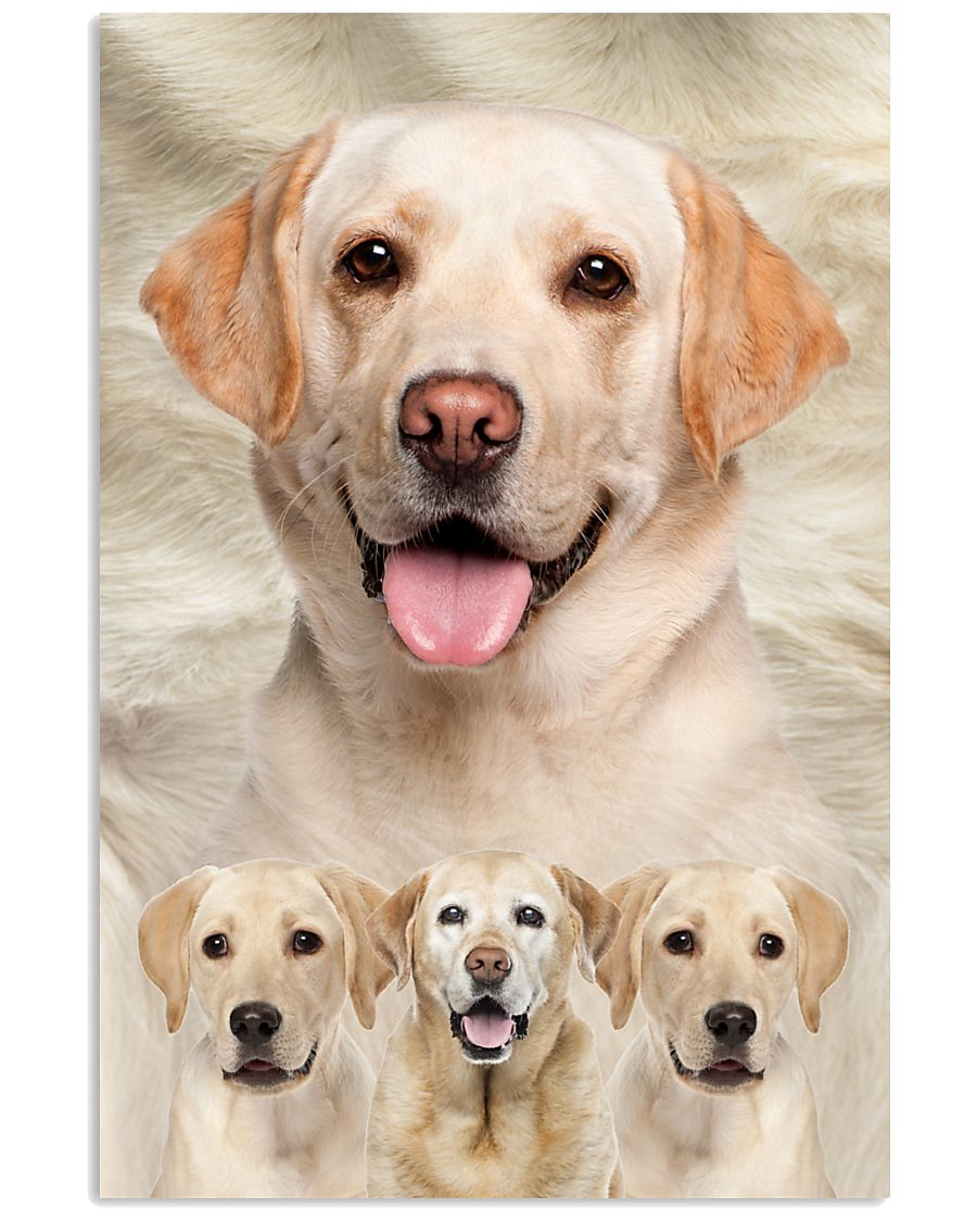 Labrador Retriever Awesome 1512 11x17 Poster