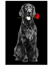 Irish Setter Rose Poster 3001  11x17 Poster front