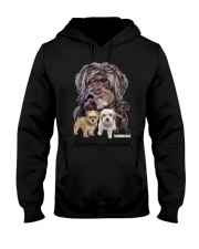 Schnoodle Awesome Family 0701 Hooded Sweatshirt thumbnail