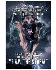 Belgian-Shepherd I am the storm Poster 1503 11x17 Poster front