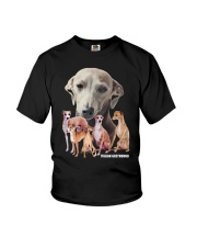 Italian Greyhound Awesome Family 0701 Youth T-Shirt thumbnail