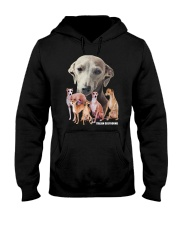 Italian Greyhound Awesome Family 0701 Hooded Sweatshirt thumbnail