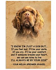 Sussex Spaniel I Know Im Just A Dog Poster 1401  11x17 Poster front