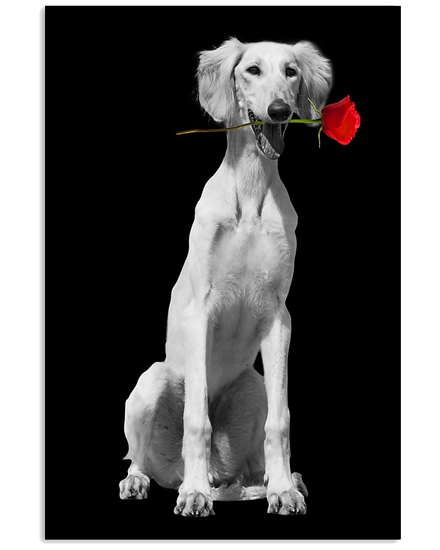 Saluki Rose Poster 3001  11x17 Poster