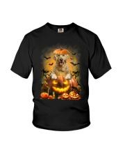 Golden Retriever And Pumpkin Youth T-Shirt thumbnail