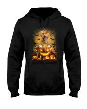 Golden Retriever And Pumpkin Hooded Sweatshirt thumbnail