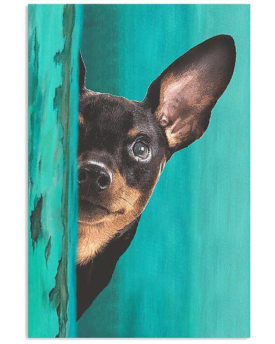 Miniature - Pinscher Gorgeous Poster 2501