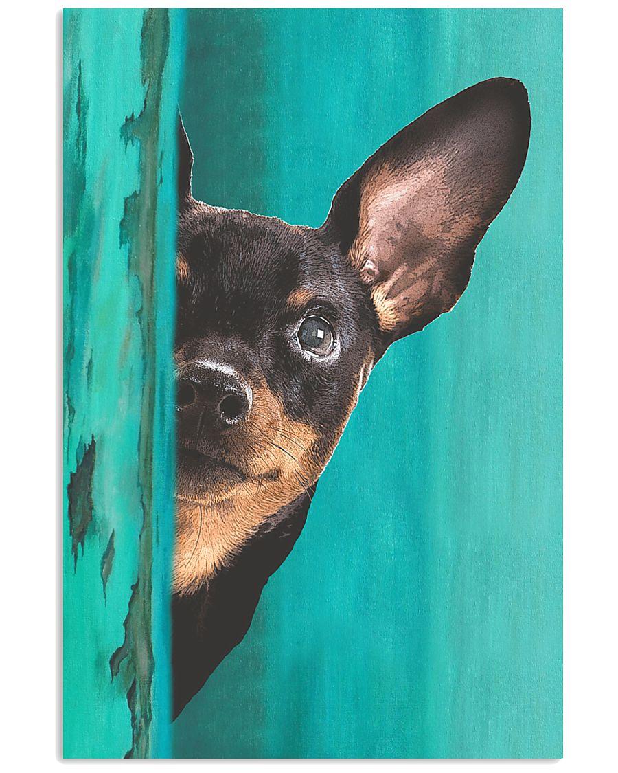 Miniature - Pinscher Gorgeous Poster 2501 11x17 Poster