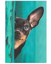 Miniature - Pinscher Gorgeous Poster 2501 11x17 Poster front