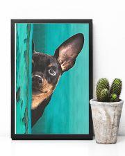 Miniature - Pinscher Gorgeous Poster 2501 11x17 Poster lifestyle-poster-8