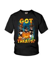 Rottweiler Got Treat 0108 Youth T-Shirt thumbnail