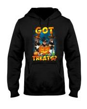Rottweiler Got Treat 0108 Hooded Sweatshirt thumbnail