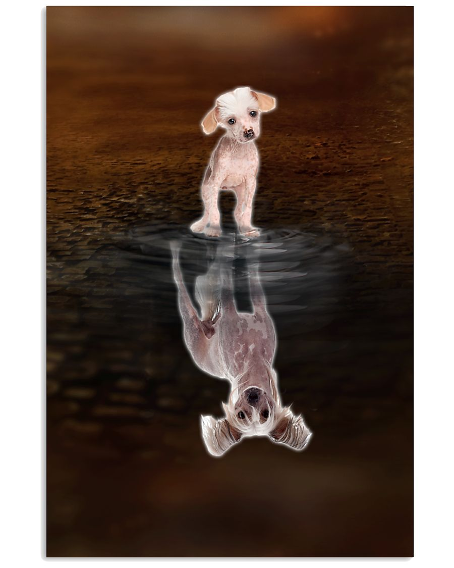 Chinese Crested Believe 11x17 Poster