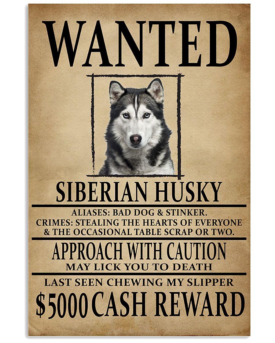 Siberian Husky Wanted Poster 2201  11x17 Poster
