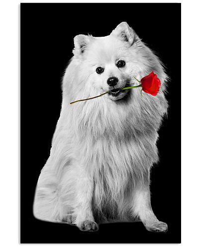 Japanese Spitz Rose Poster 3001