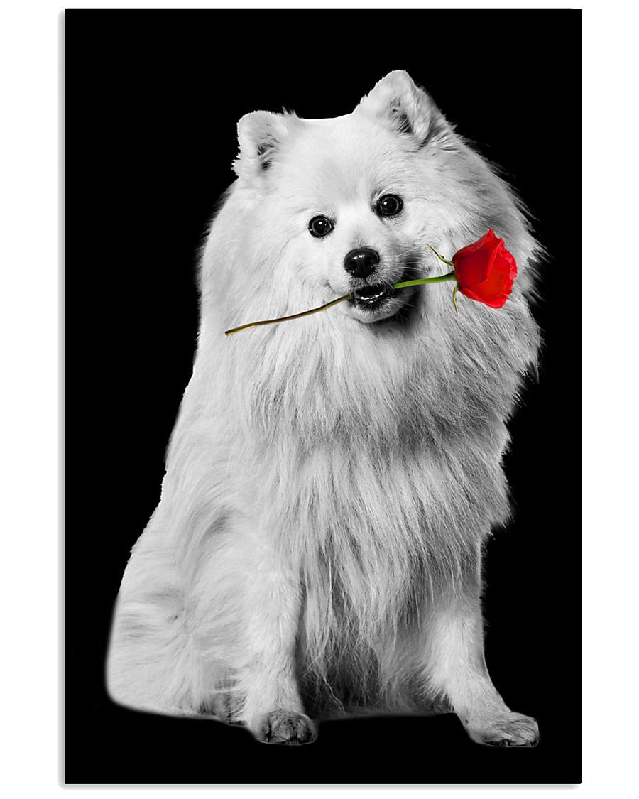Japanese Spitz Rose Poster 3001  11x17 Poster