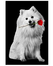 Japanese Spitz Rose Poster 3001  11x17 Poster front