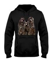 Newfoundland Five Hooded Sweatshirt thumbnail