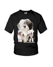 Old English Sheepdog Awesome Family 0701 Youth T-Shirt thumbnail