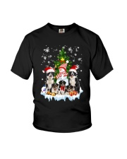 Border Collie Family 2109 Youth T-Shirt thumbnail