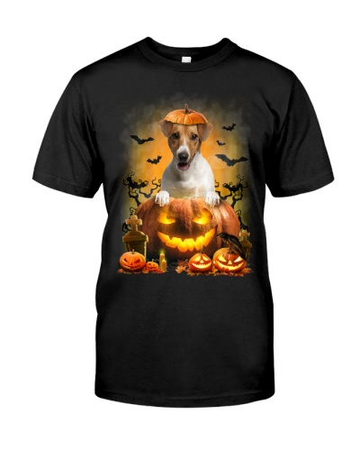 Jack Russell Terrier And Pumpkin