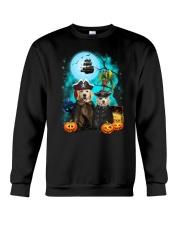 Golden Retriever Pirate 2308 Crewneck Sweatshirt thumbnail