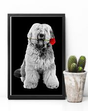 Old English Sheepdog Rose Poster 3001  11x17 Poster lifestyle-poster-8