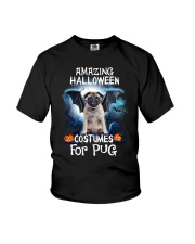 THEIA Pug Amazing 2607 Youth T-Shirt thumbnail