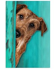 Irish Terrier Gorgeous 11x17 Poster front