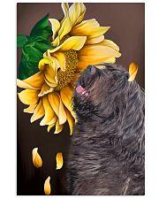 Bergamasco Shepherd Sunflower 11x17 Poster front