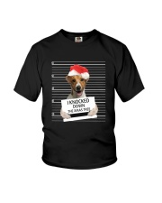 Jack Russell Terrier Knocked Down 0112 Youth T-Shirt thumbnail