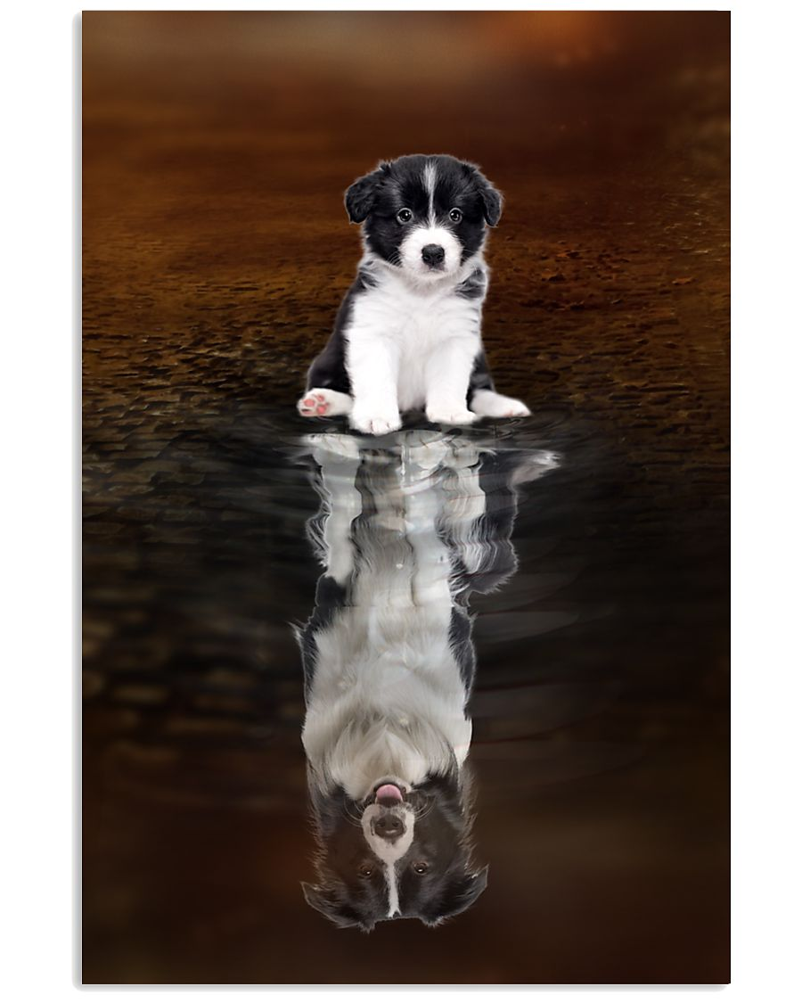 Border Collie Believe 11x17 Poster