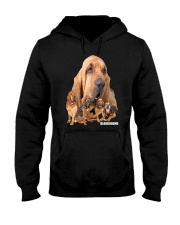 Bloodhound Awesome Family 0501 Hooded Sweatshirt thumbnail