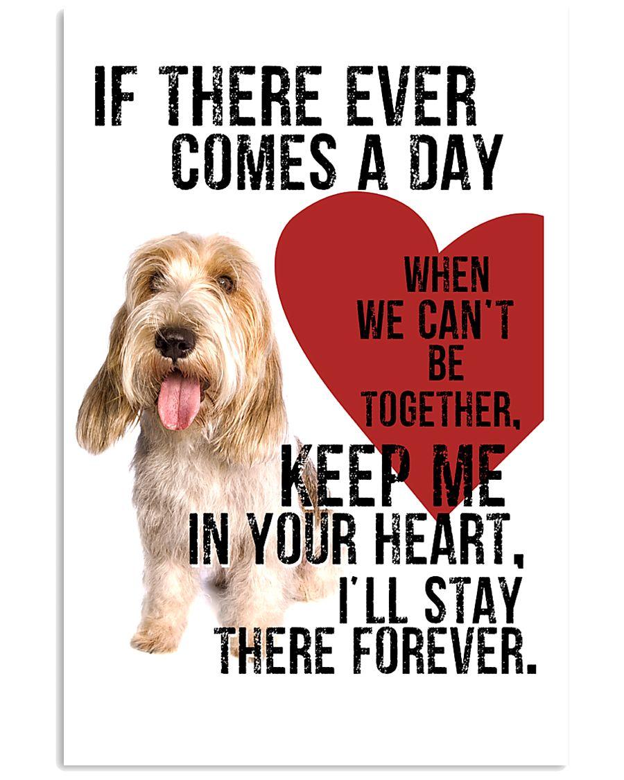 Petit Basset Griffon Vendeen In My Heart 11x17 Poster