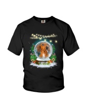 Dachshund and snowball Xmas Youth T-Shirt tile
