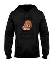 English Cocker Spaniel trying to be awesome 180319 Hooded Sweatshirt thumbnail
