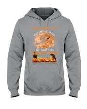Basset Hound And Broomstick  Hooded Sweatshirt thumbnail
