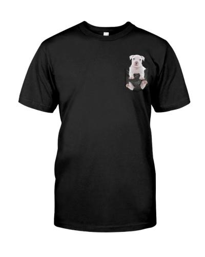 American Staffordshire Terrier Pocket 4