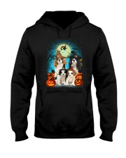 Gaea - Cavalier King Charles Spaniel Halloween Hooded Sweatshirt thumbnail