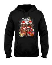 ZEUS - Dachshund Christmas- 2809 - 73 Hooded Sweatshirt front