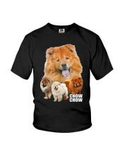 Chow Chow Awesome Family 0701 Youth T-Shirt thumbnail