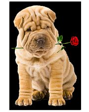 Shar Pei Rose 11x17 Poster front