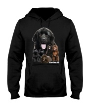 Newfoundland Awesome Hooded Sweatshirt thumbnail
