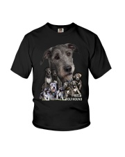 Irish Wolfhound Awesome Family 0701 Youth T-Shirt thumbnail